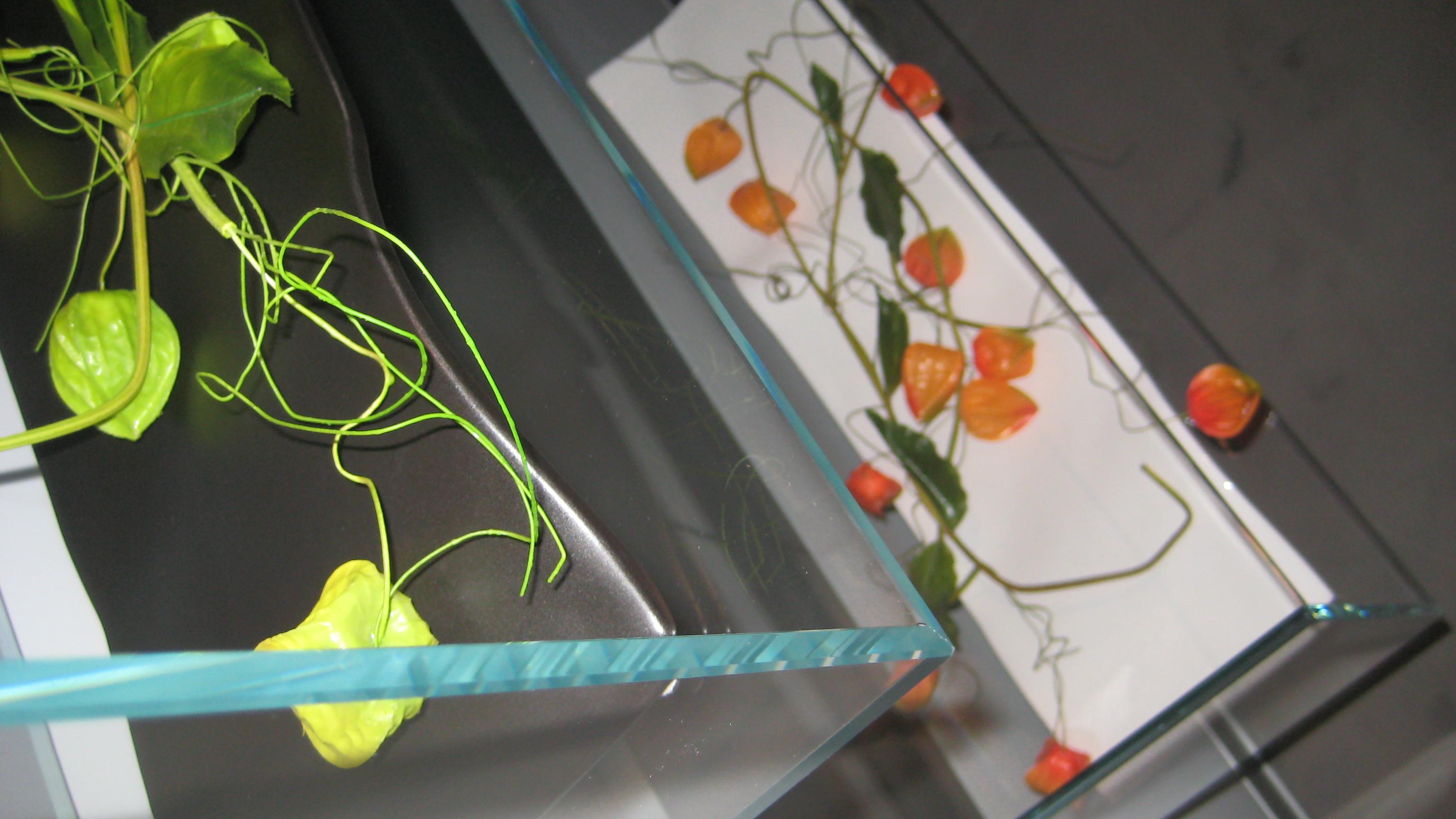 Forma-Interiorismo. Exposición tienda.